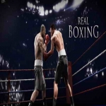 Real Boxing (1DVD)