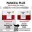 แพนเซีย พลัส ลดน้ำหนัก - PANCEA PLUS thumbnail 4