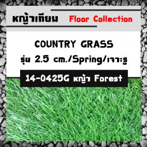 COUNTRY GRASS